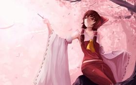 Обои взгляд, девушка, улыбка, дерево, сакура, art, hakurei reimu