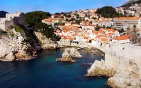 Картинка море, деревья, скалы, побережье, крыши, домики, городок