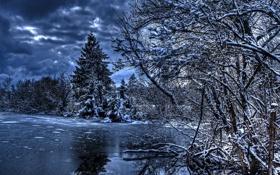 Картинка зима, вода, снег, природа, фото, ель