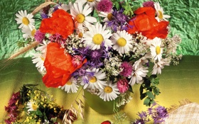 Обои фото, Цветы, Клубника, Ромашки, Маки, Букет, Васильки