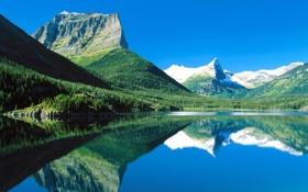 Обои лес, горы, озеро, Монтана, США, национальный парк