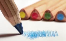 Картинка макро, цвет, карандаши