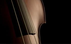 Обои музыка, скрипка, струны, инструмент