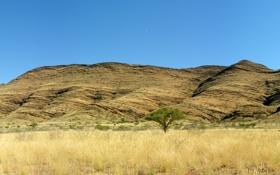 Картинка Панорама, Холмы, Южная Африка.jpg, Саванна, Горы, Африка, Фото