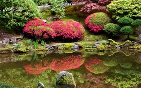 Картинка США, камни, дорожка, трава, изгородь, пруд, Portland