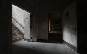 Картинка фон, двери, тени