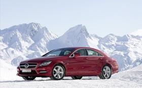 Обои зима, авто, снег, машины, тачки, Benz, север