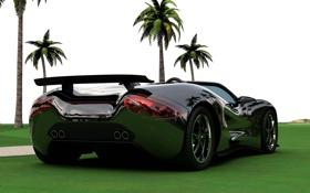 Обои дорога, car, небо, трава, пальмы, McLaren, стоит