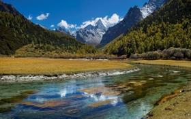 Обои лес, горы, река, небо, облака