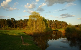 Картинка лес, небо, трава, пейзаж, река, отдых, прогулка