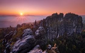 Обои лес, солнце, горы, утро, Саксония, Michael Breitung