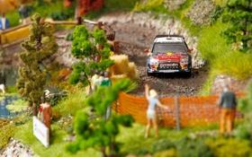 Картинка Модель, Citroen, DS3, WRC, Ралли, Sebastien Loeb, Макет