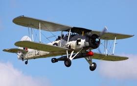 Обои самолёт, авиация, Swordfish