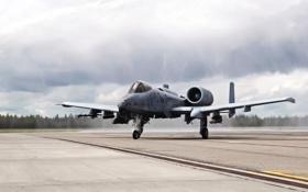 Обои Самолет, A 10A, Thunderbolt, Пасмурно, A-10, Штурмовик, Thunderbolt II