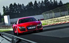 Обои Audi, Красный, Дорога, Ауди, Машина, Капот, Фары