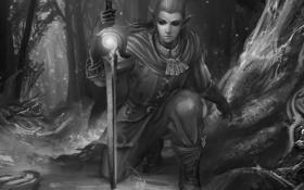 Картинка монохромное, лес, эльф, парень, меч, рисунок, черно-белое