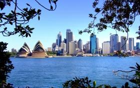 Обои море, мост, город, дома, причал, Австралия, Сидней