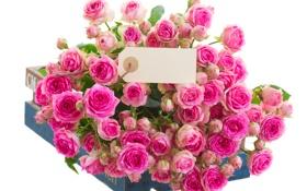 Картинка розы, ящик, открытка