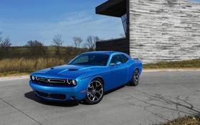 Обои синий, фон, Додж, Dodge, Challenger, передок, Muscle car