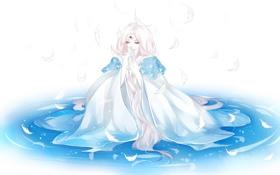 Обои вода, Девушка, перья