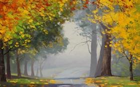 Обои пейзаж, осень, желтые, листья, асфальт, artsaus, деревья