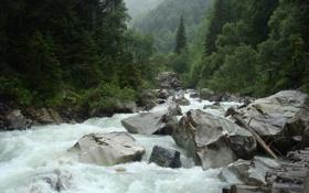 Обои камни, река, зелень, русская природа