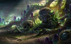 Картинка существо, грибы, череп, след, арт, голем, кристаллы