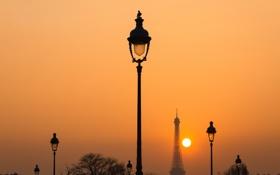Обои птица, Париж, фонари