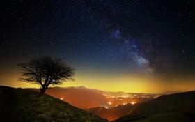Обои Национальный парк Сибиллини, звезды, млечный путь, горы, Италия, ночь, дерево