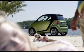 Обои fortwo, babe, and, green