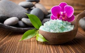 Обои spa, salt, orchid, zen, stones, спа, соль, орхидея