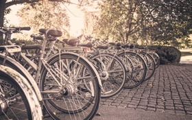 Обои велосипед, город, парк, брусчатка, колесо, парковка