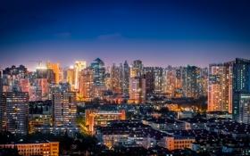 Обои небо, ночь, огни, здания, кран, Китай, Шанхай