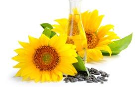 Картинка подсолнухи, масло, семечки, листики, бутылёк