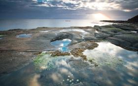 Картинка море, водоросли, тучи, камни