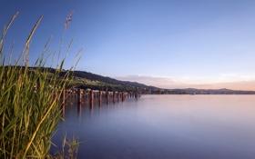 Картинка лето, пейзаж, озеро
