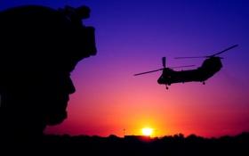 Обои небо, солнце, полет, закат, обои, вечер, силуэт