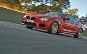 Обои Красный, Авто, Дорога, BMW, БМВ, Фары, Купэ