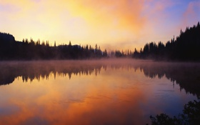Картинка лес, пейзаж, закат, озеро, Природа