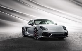 Обои Porsche, Cayman, порше, GTS, 2014, кайман