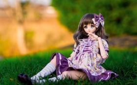 Картинка природа, игрушка, кукла, аниме, платье, бант, сидит