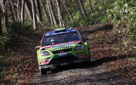Обои Ford, Focus, WRC