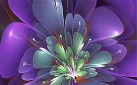 Обои цветок, фиолетовый, линии, лепестки, тычинки, зелёный