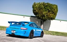 Обои Porsche, 911, тюнинг, голубой, порше, забор, дерево