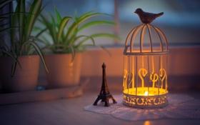Картинка вечер, свечи, фонарь, eiffel tower