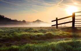 Обои природа, роса, забор, утро