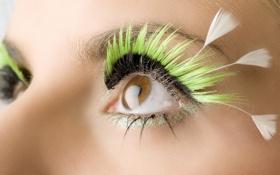 Обои глаза, ресницы, перья, зеленые