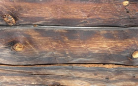 Картинка дерево, сучки, брёвна, брус, конопатка, светло-коричневый