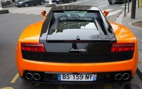 Обои Gallardo, задок, Orange, Lamborghini, supercar