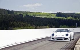 Картинка белый, небо, 911, 997, Porsche, ели, сосны